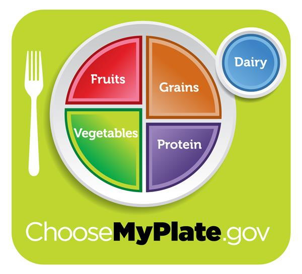 government food plate